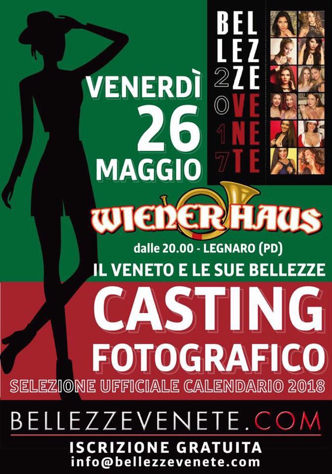 Flyer Bv18 Casting Wienerhaus
